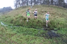 Masters Cross Country